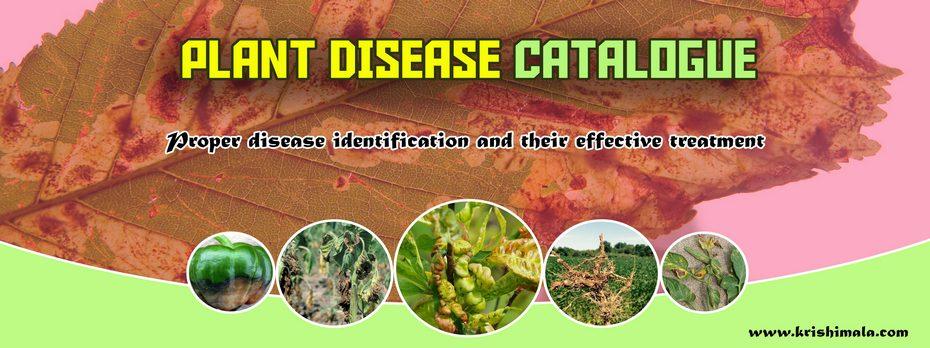 Plant_Diseases_Catalogue_Final_New.jpg